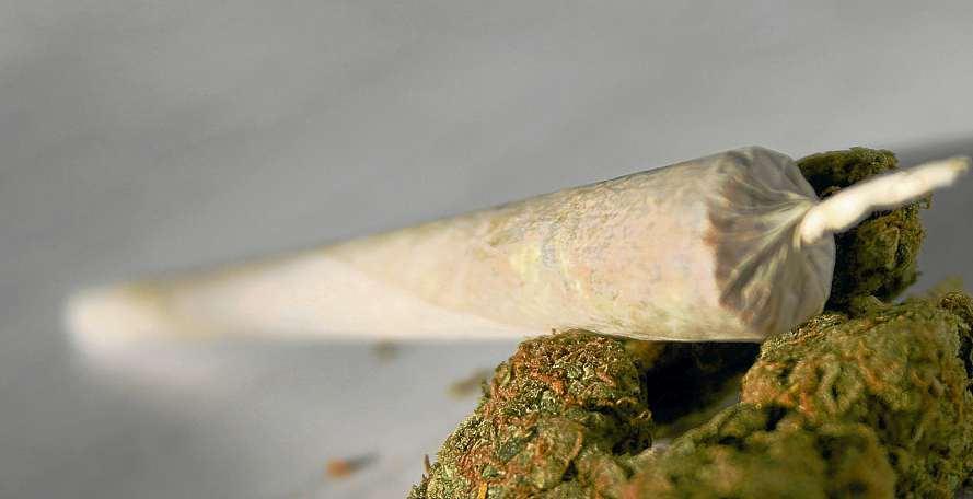 Cannabis, die Nachwuchsdroge